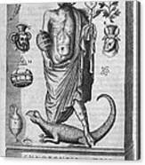 Egyptian God Anubis, 17th Century Canvas Print