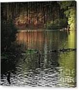 Elder Lake Canvas Print