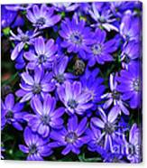 Electric Indigo Garden Canvas Print