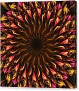 Electric Mandala 4 Canvas Print