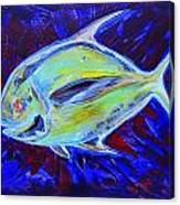 Electric Pompano Canvas Print