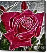 Electrostatic Rose Canvas Print