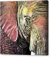 Elephancy Canvas Print
