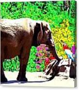 Elephant-parrot Dialogue Canvas Print