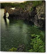Elephant Rests In The Green Lagoon   Canvas Print