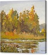 Elk Island 5 Canvas Print