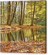 Emerald Creek 2 Canvas Print