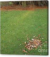 Empty Lawn With A Little Heap Of Leaves Scraped Together Canvas Print