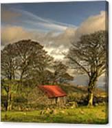 Emsworthy Barn Canvas Print