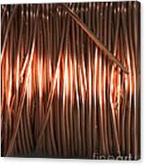 Enamel Coated Copper Wire Canvas Print