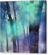 Enchanted Forest. Painting With Light Canvas Print