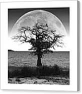Enchanted Moon Canvas Print