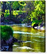 Enchanted River Canvas Print