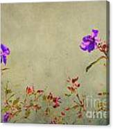 Encore Canvas Print