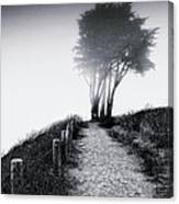 End Of A Road Canvas Print