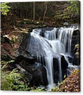 Enders Falls Canvas Print