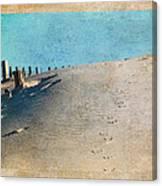 Endless Footprints Canvas Print
