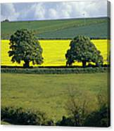 The Cotswolds 2 Canvas Print