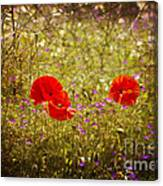 English Summer Meadow. Canvas Print
