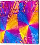 Erythromycin Crystal Canvas Print