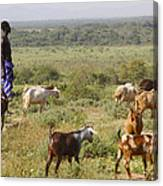 Ethiopia-south Tribal Goat Herder Canvas Print