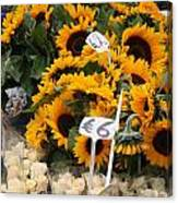 European Markets - Sunflowers And Roses Canvas Print