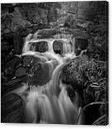 Even Flow 4.1 Bw Canvas Print