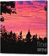 Evening In Paradise Painterly Style Canvas Print