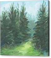 Evergreen Field Canvas Print