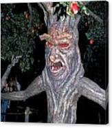 Evil Tree In Oz Canvas Print