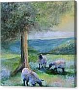 Ewe Hoo Canvas Print