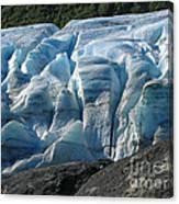Exit Glacier Viewpoint Canvas Print