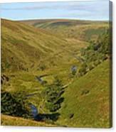 Exmoor's River Barle Canvas Print