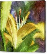 Exotic Lily In Oil Canvas Print