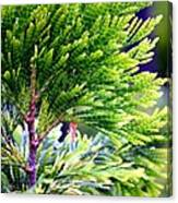 Extreme Shades Of Green Canvas Print