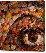 Eye Of Autumn Canvas Print