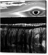 Eye Over Everglades Canvas Print