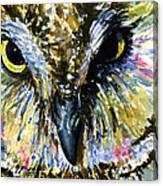 Eyes Of Owl's 13 Canvas Print