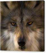 Eyes Of The Beast Canvas Print