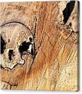 Face In The Wood Canvas Print
