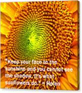 Face To The Sun Canvas Print