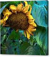 Fading Giant Canvas Print