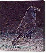 Faithful Raven Canvas Print