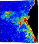 Fal-col Satellite Image Of Coastal Canvas Print
