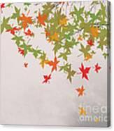 Fall 2012 Canvas Print