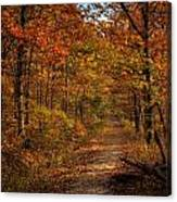 Fall At Center Point Trailhead Canvas Print