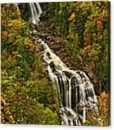Fall At Whitewater Falls  Canvas Print