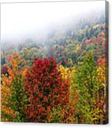 Fall Color Panoramic Canvas Print