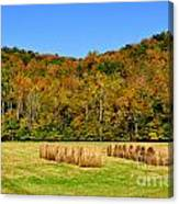 Fall Color Randolph County West Virginia Canvas Print
