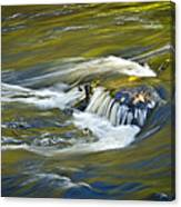 Fall Colors In River Rapids Canvas Print